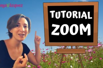 tutorial zoom